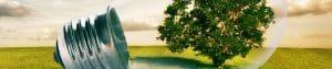 solar energy, symbolic tree inside lightbulb